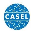 ארגון קאסל - שיתוף הפעולה למען למידה אקדמית חברתית ורגשית